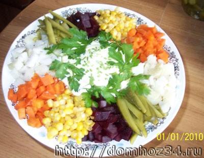 Вкусные закуски. Салат Радуга